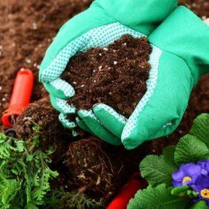 Organic Garden Fertilizer